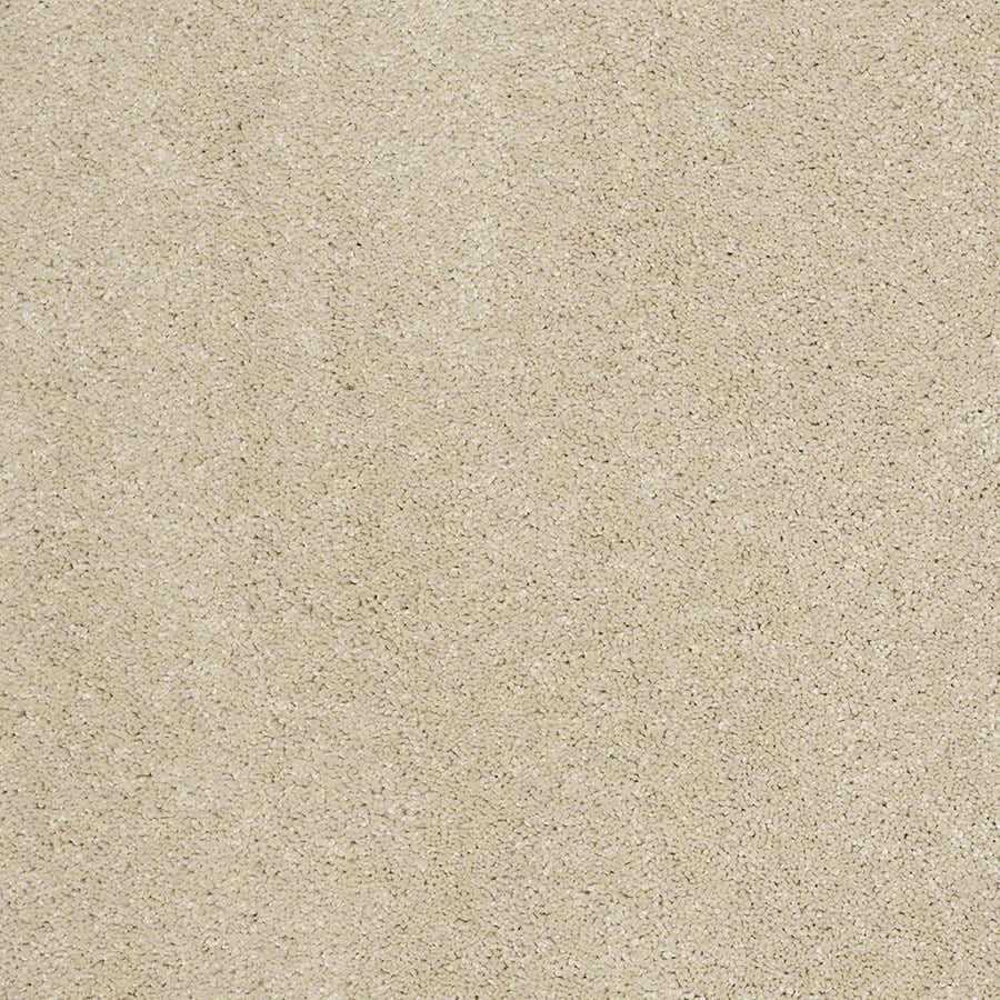 STAINMASTER Luscious IV (S) TruSoft Sandstone Plus Carpet Sample