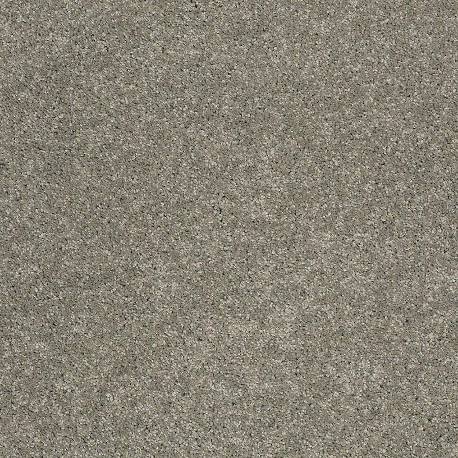 STAINMASTER Luscious IV (S) TruSoft Cape Cod Plus Carpet Sample