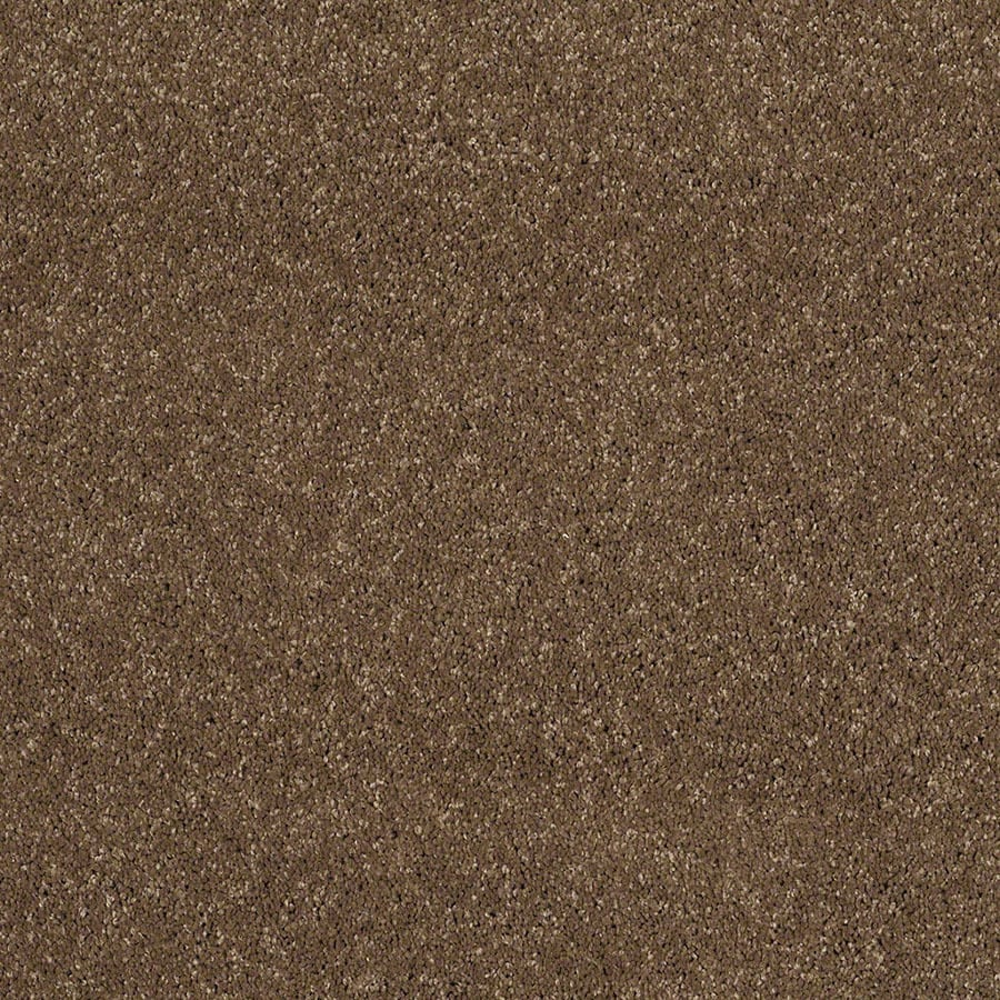 STAINMASTER Luscious IV (S) TruSoft Chestnut Plus Carpet Sample
