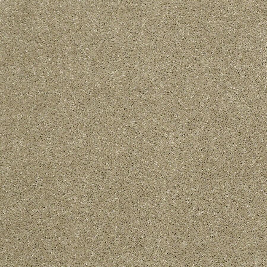 STAINMASTER Luscious IV (S) TruSoft Bay Laurel Plus Carpet Sample