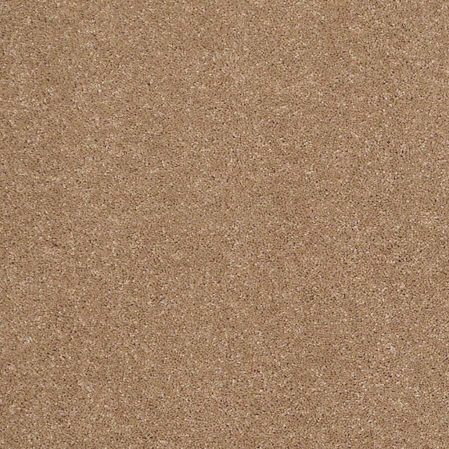 STAINMASTER Luscious IV (S) TruSoft Nutmeg Plus Carpet Sample