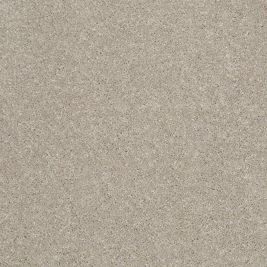 STAINMASTER Luscious IV (S) TruSoft Smoky Taupe Plus Carpet Sample