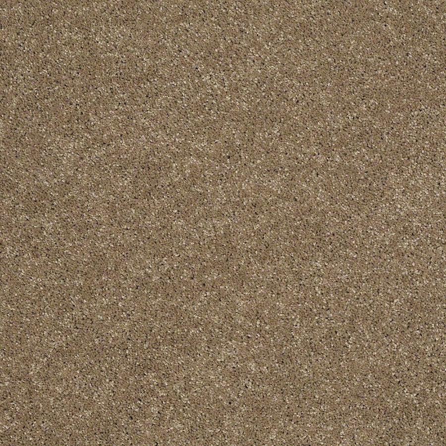 STAINMASTER Luscious IV (S) TruSoft Cobblestone Plus Carpet Sample