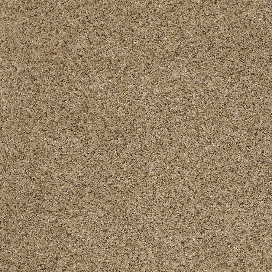 STAINMASTER Luscious IV (T) TruSoft Brownstone Plus Carpet Sample