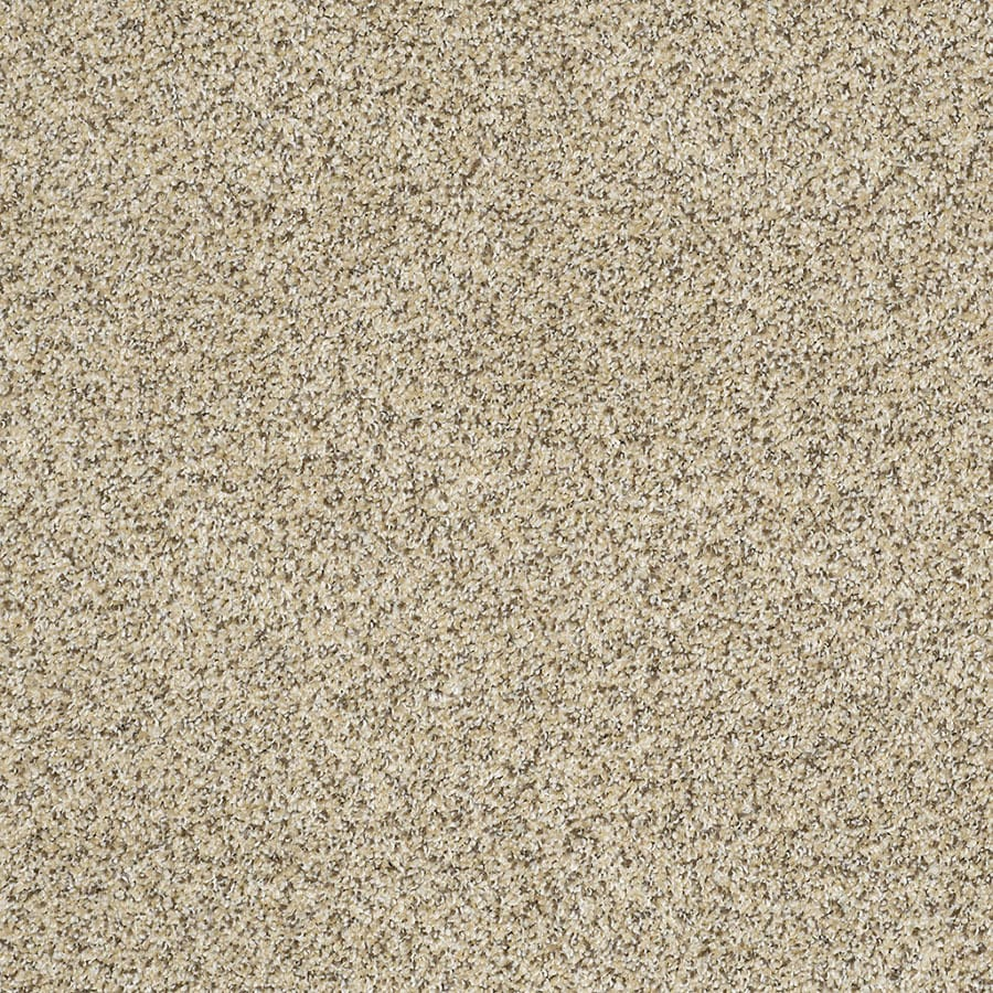STAINMASTER TruSoft Private Oasis IV Bordeaux Carpet Sample