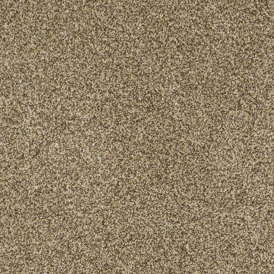 STAINMASTER TruSoft Private Oasis IV Sahara Gold Carpet Sample