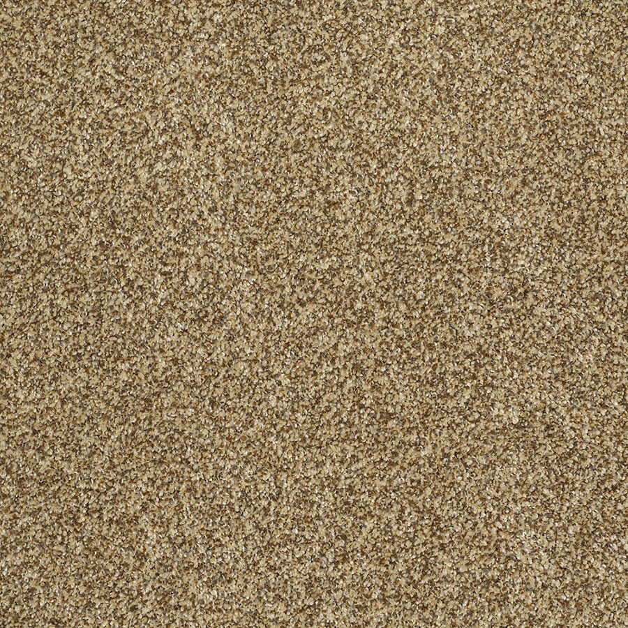 STAINMASTER TruSoft Private Oasis IV Tigereye Plush Carpet Sample