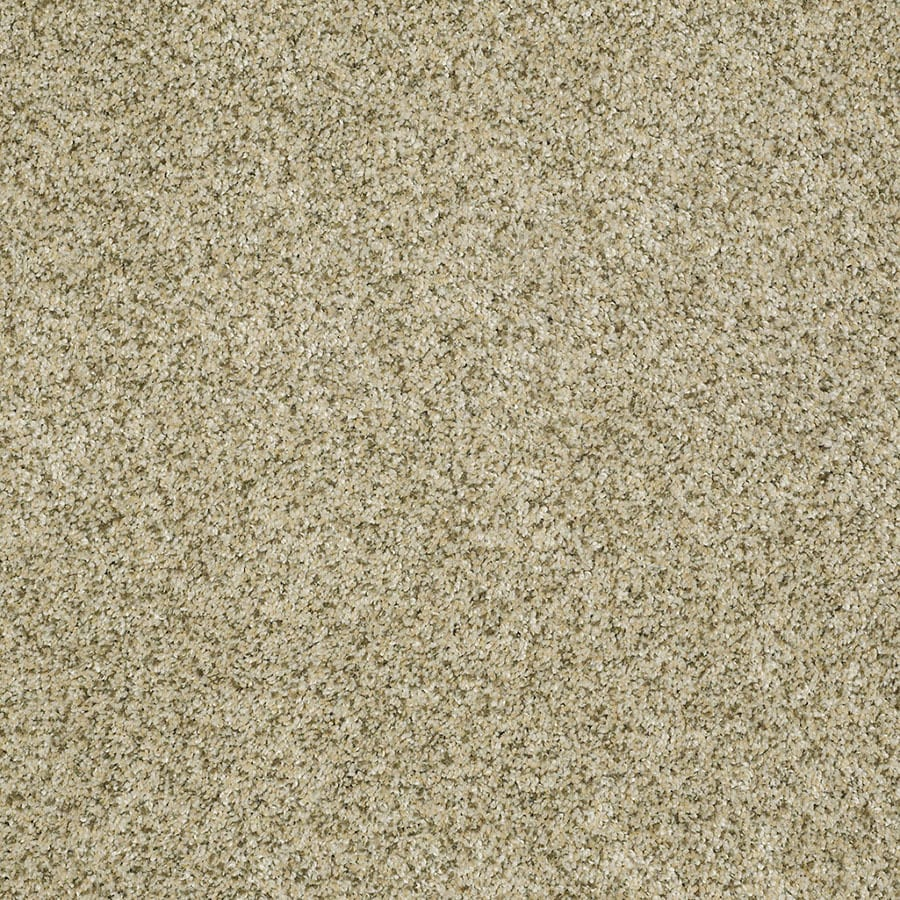 STAINMASTER TruSoft Private Oasis IV Sea Foam Carpet Sample