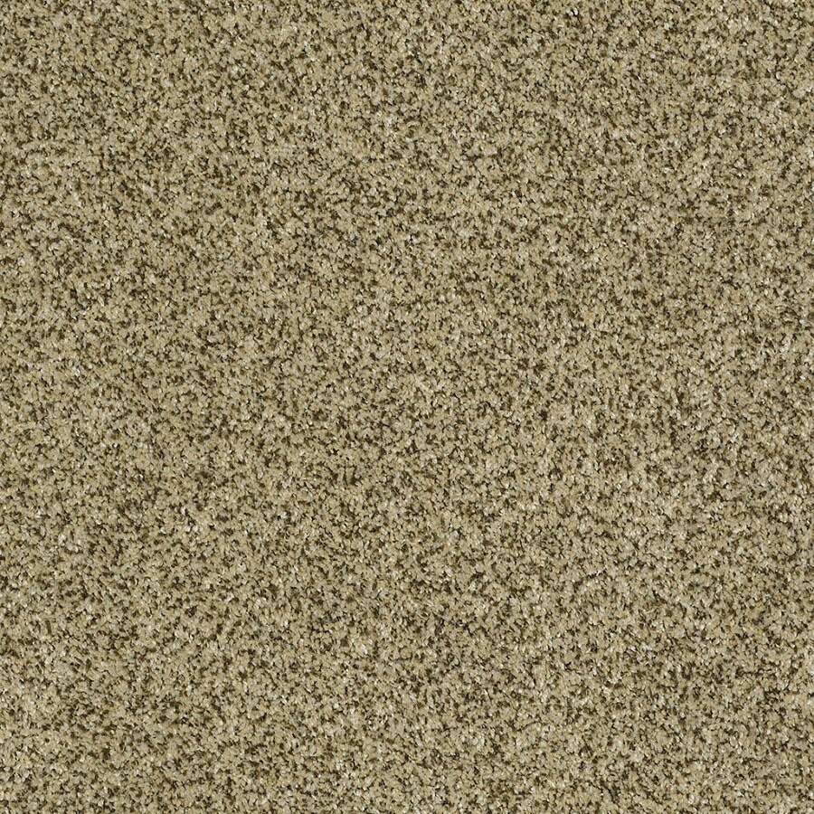 STAINMASTER Private Oasis IV Trusoft Papillion Plush Carpet Sample