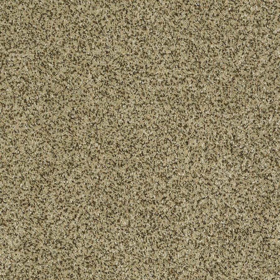 STAINMASTER Private Oasis IV Trusoft Papillion Plus Carpet Sample