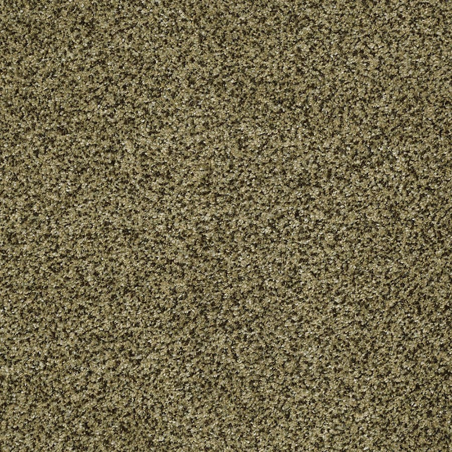 STAINMASTER TruSoft Private Oasis IV Verde Carpet Sample