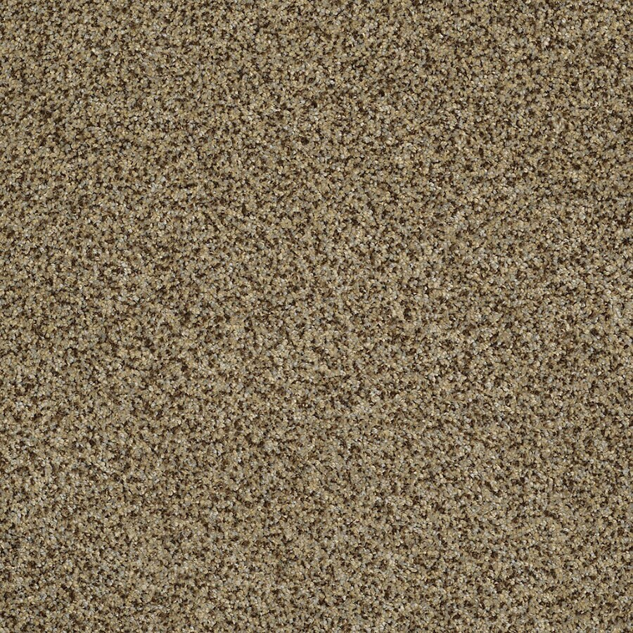 STAINMASTER Private Oasis IV Trusoft Bahia Plush Carpet Sample