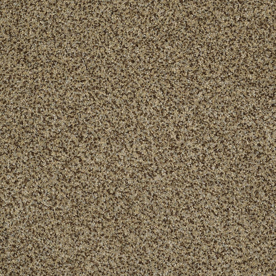 STAINMASTER Private Oasis IV Trusoft Bahia Plus Carpet Sample