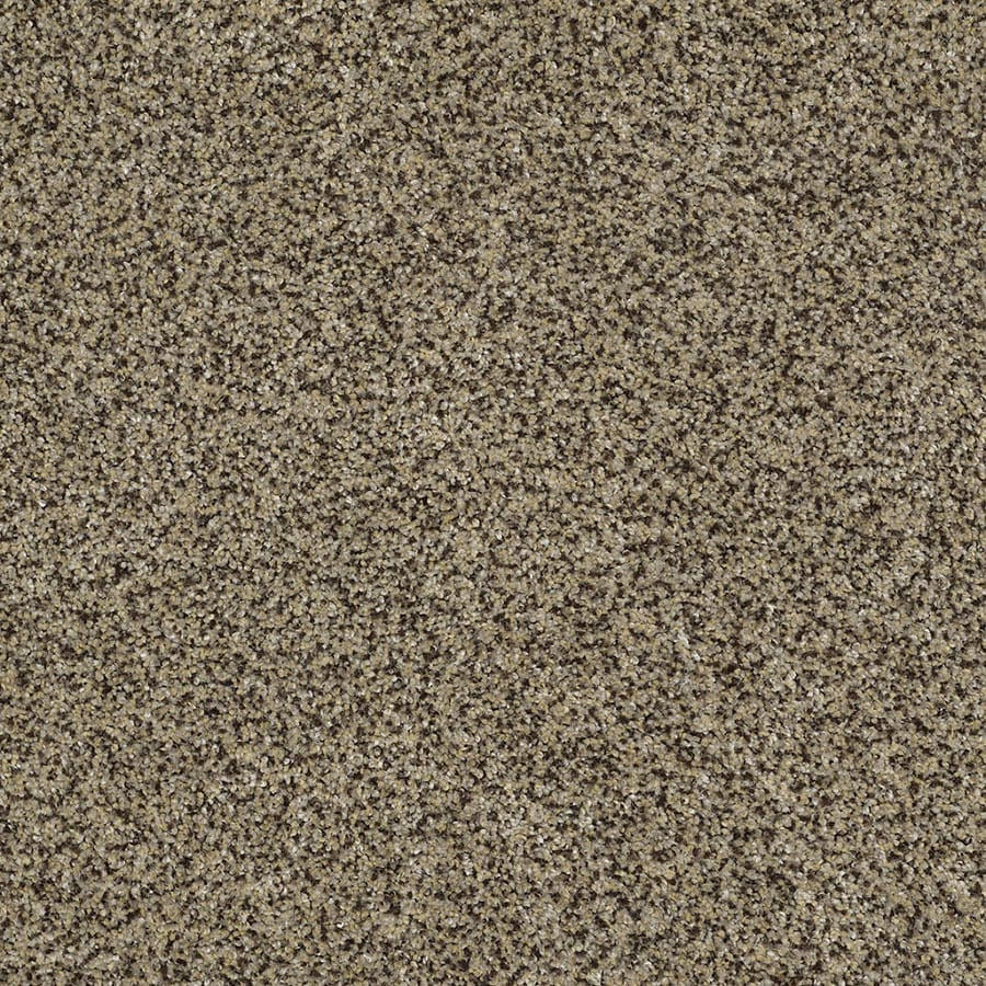 STAINMASTER TruSoft Private Oasis IV Fantasia Plush Carpet Sample
