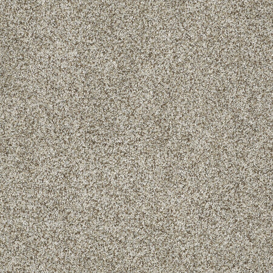 STAINMASTER TruSoft Private Oasis IV Key West Carpet Sample