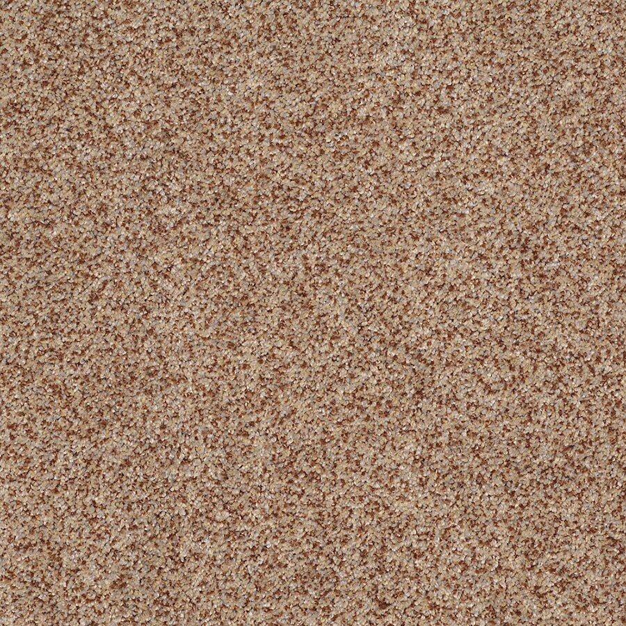 STAINMASTER TruSoft Private Oasis IV Florence Plush Carpet Sample