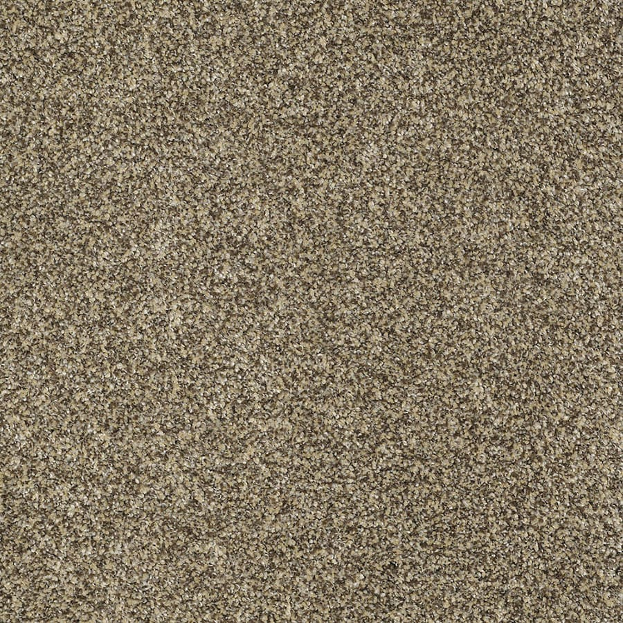 STAINMASTER TruSoft Private Oasis IV Taupe Plush Carpet Sample