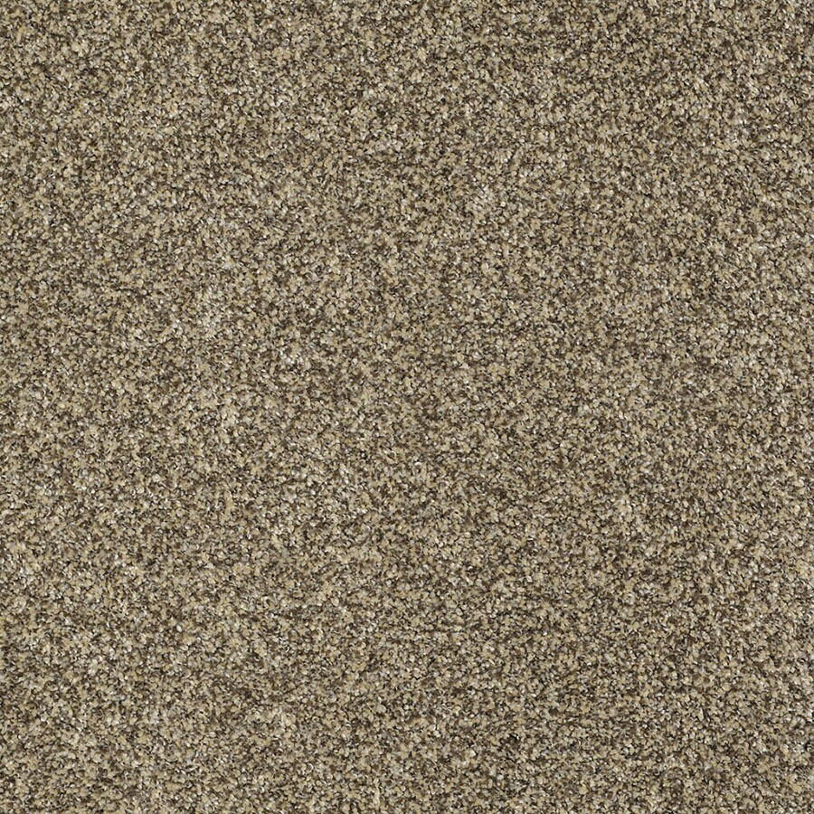 STAINMASTER Private Oasis IV Trusoft Taupe Plus Carpet Sample