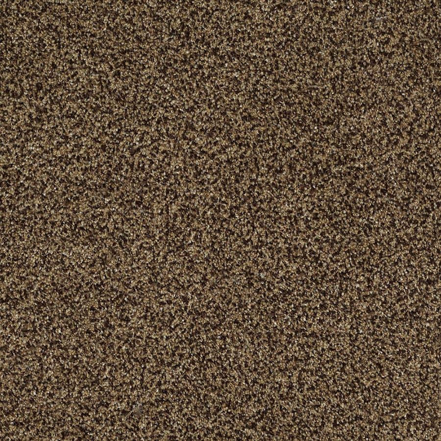 STAINMASTER TruSoft Private Oasis IV Supreme Carpet Sample