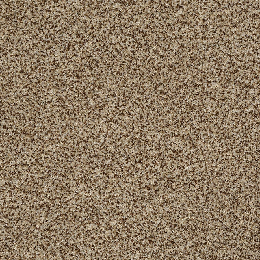 STAINMASTER TruSoft Private Oasis IV Niagara Carpet Sample