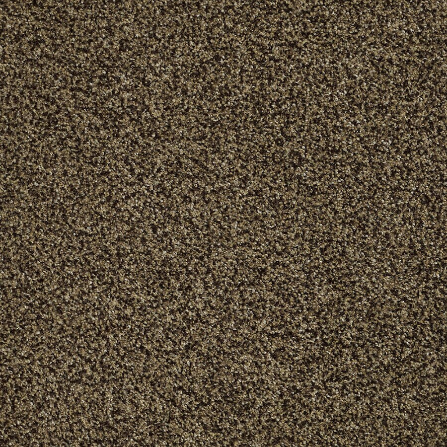 STAINMASTER TruSoft Private Oasis IV Appia Plush Carpet Sample