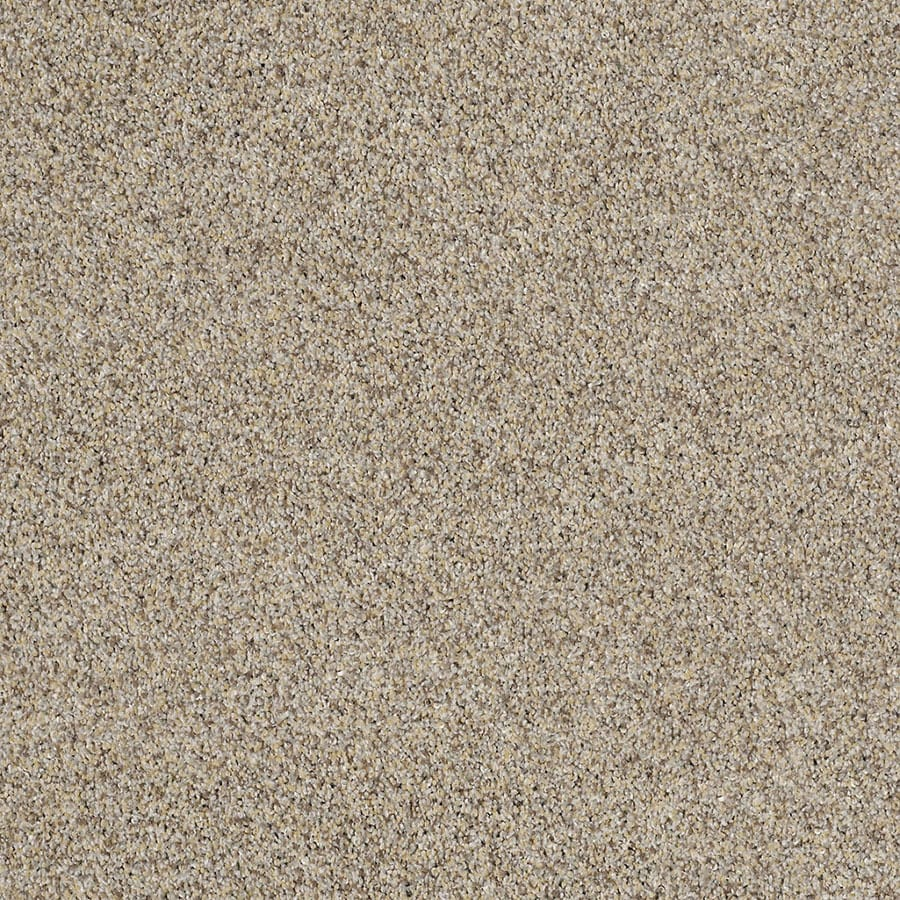 STAINMASTER Private Oasis IV Trusoft Antico Plus Carpet Sample