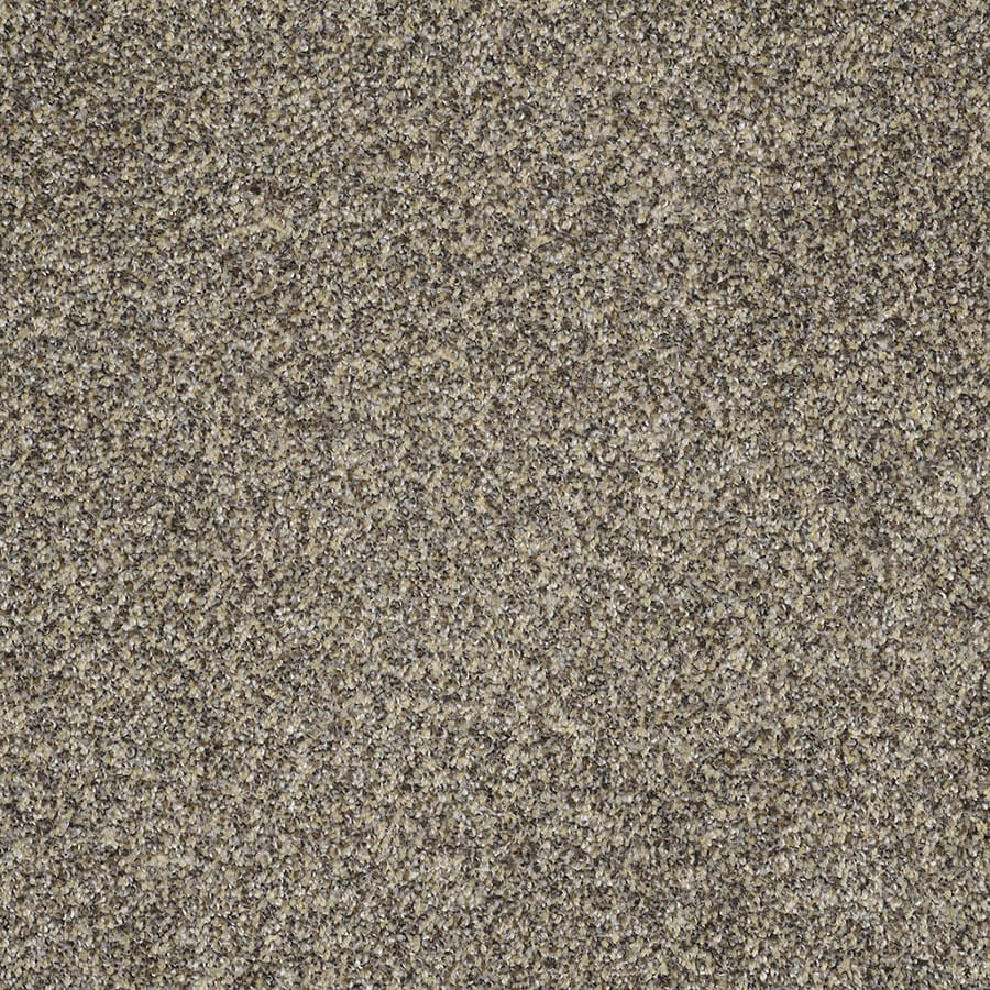 STAINMASTER Private Oasis IV Trusoft Dakota Plush Carpet Sample