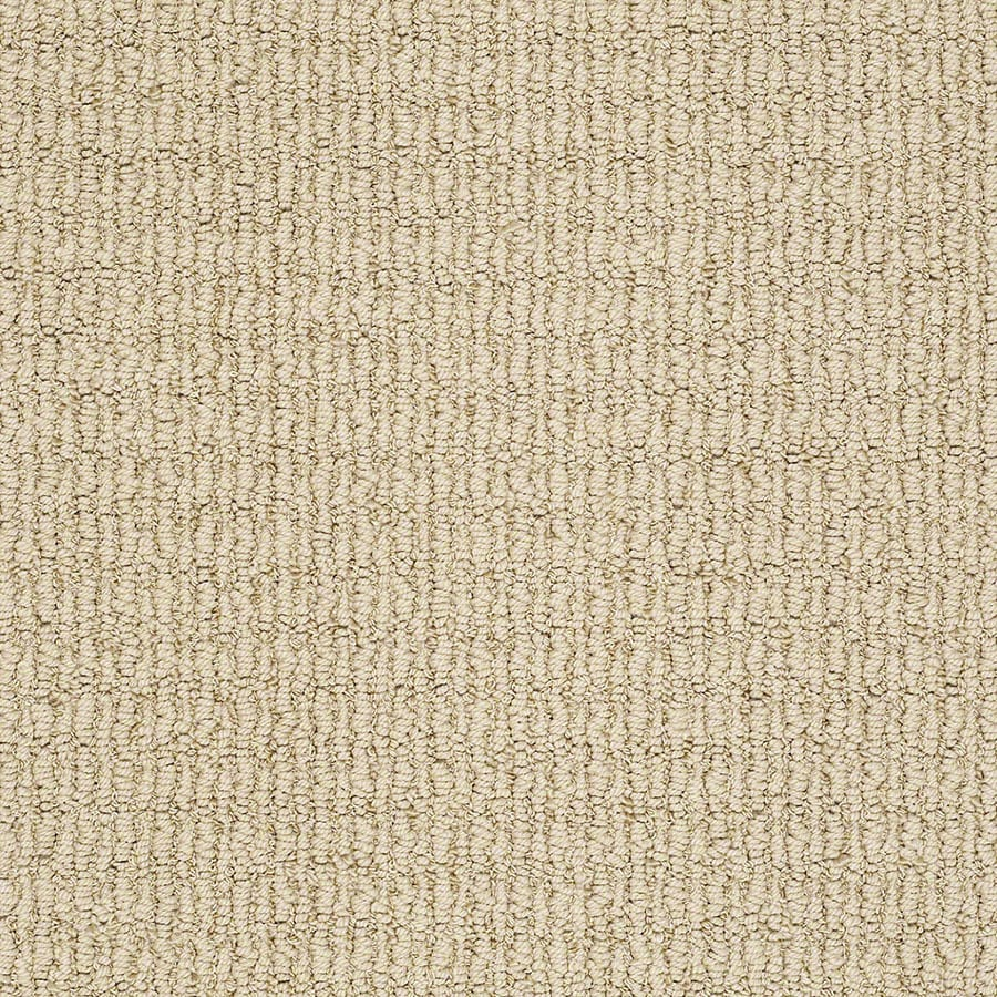 STAINMASTER TruSoft Uneqivocal Sunkissed Carpet Sample
