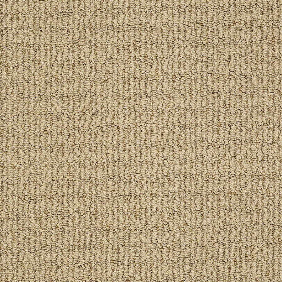STAINMASTER TruSoft Uneqivocal Rose Gold Berber/Loop Carpet Sample