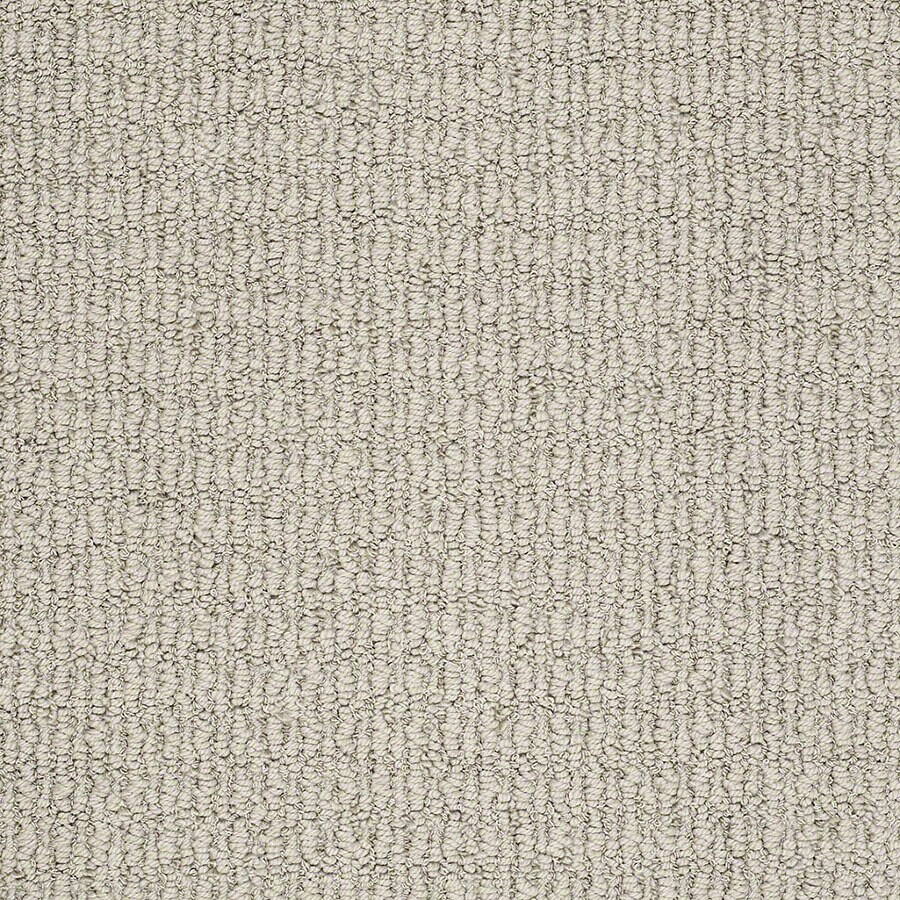 STAINMASTER TruSoft Uneqivocal Driftwood Carpet Sample