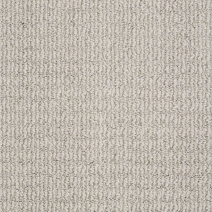 STAINMASTER TruSoft Uneqivocal Twilight Gray Berber/Loop Carpet Sample
