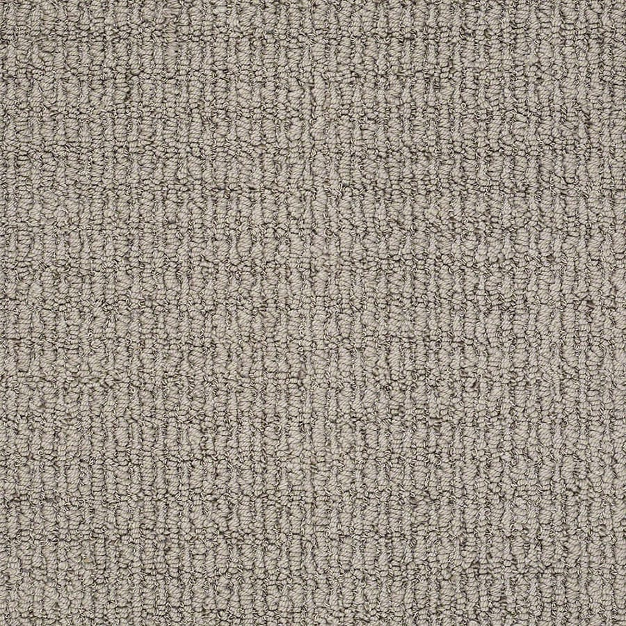 STAINMASTER TruSoft Uneqivocal Varnished Berber/Loop Carpet Sample