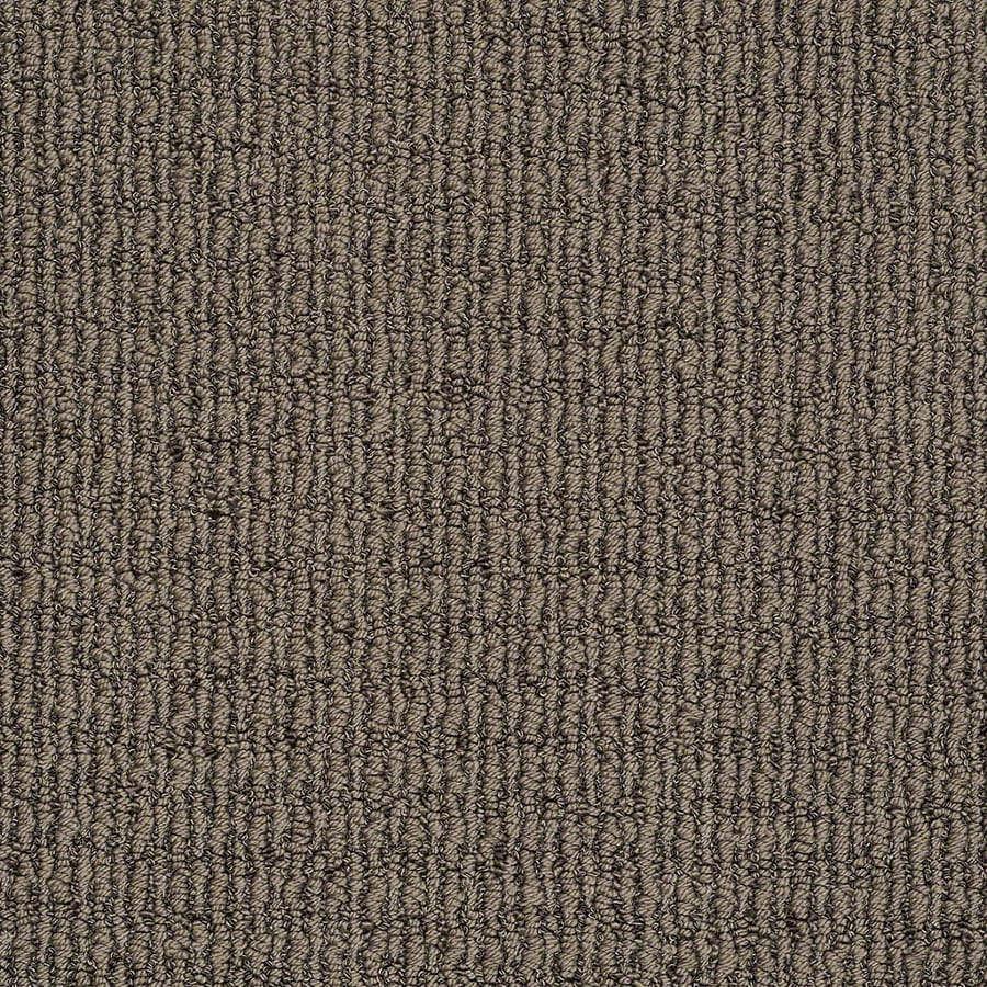 STAINMASTER Uneqivocal Trusoft Iron Age Berber Carpet Sample
