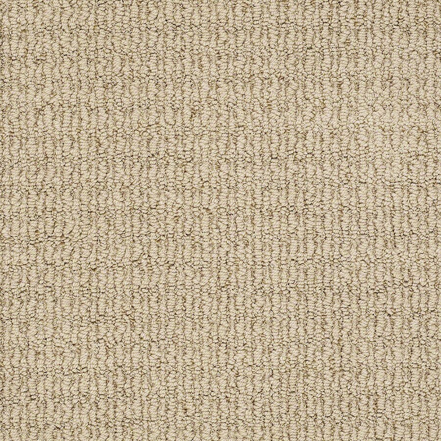 STAINMASTER TruSoft Uneqivocal Canyon Carpet Sample
