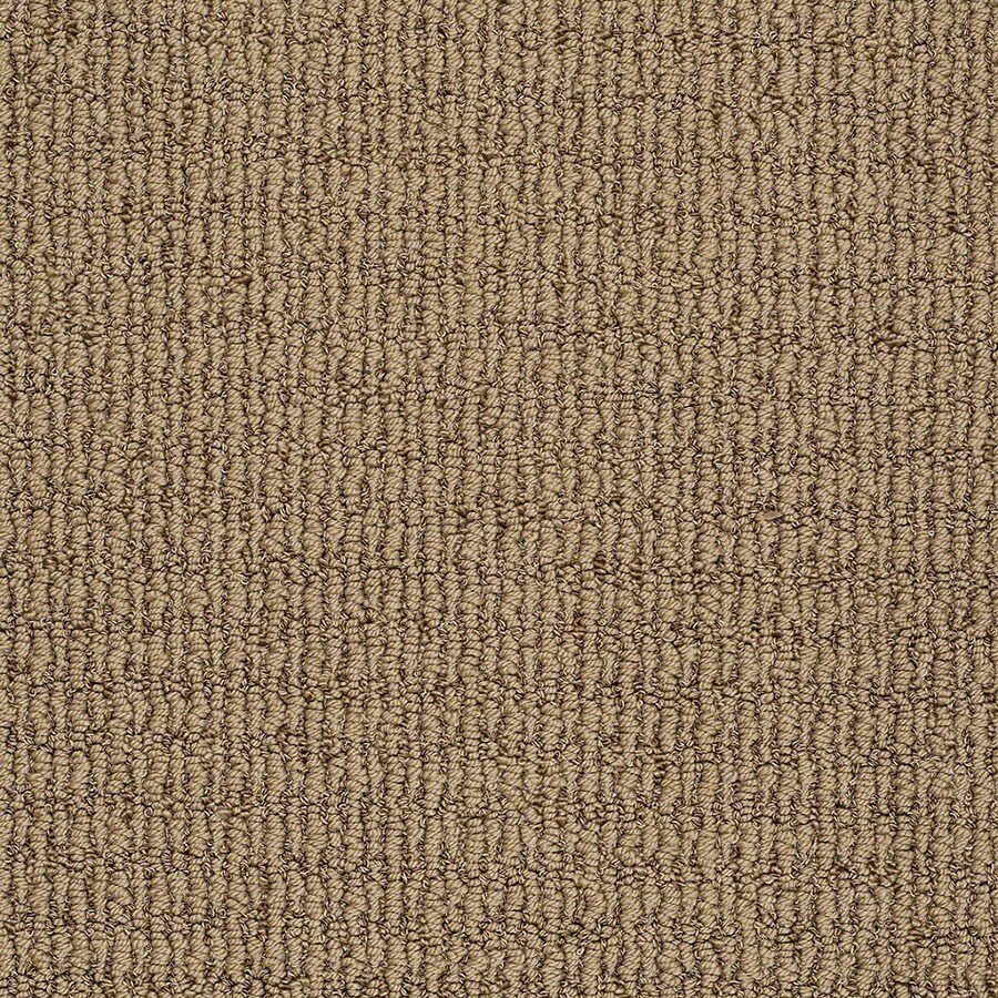 STAINMASTER TruSoft Uneqivocal Willow Bark Berber/Loop Carpet Sample
