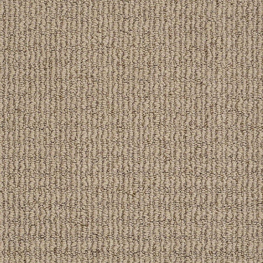 STAINMASTER TruSoft Uneqivocal Rolling Hills Carpet Sample