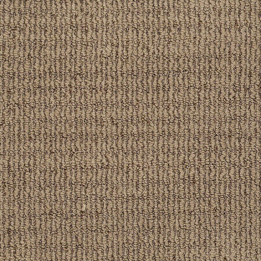 STAINMASTER TruSoft Uneqivocal Serene Brown Carpet Sample