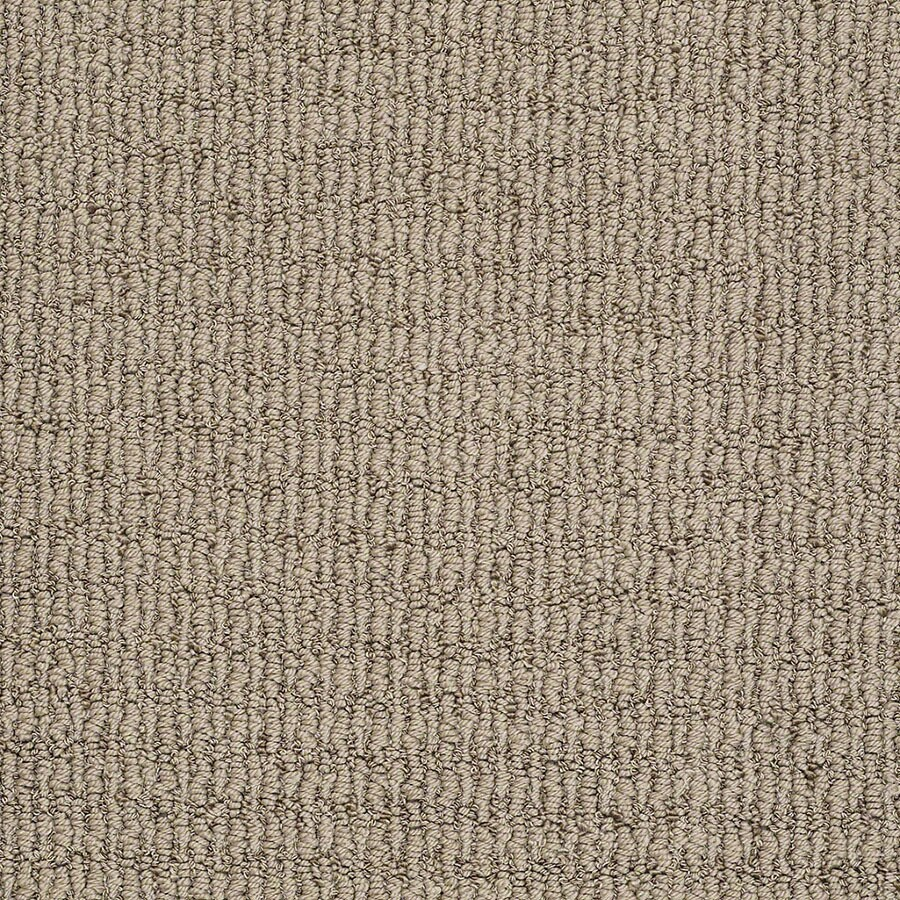 STAINMASTER TruSoft Uneqivocal Shining Taupe Carpet Sample