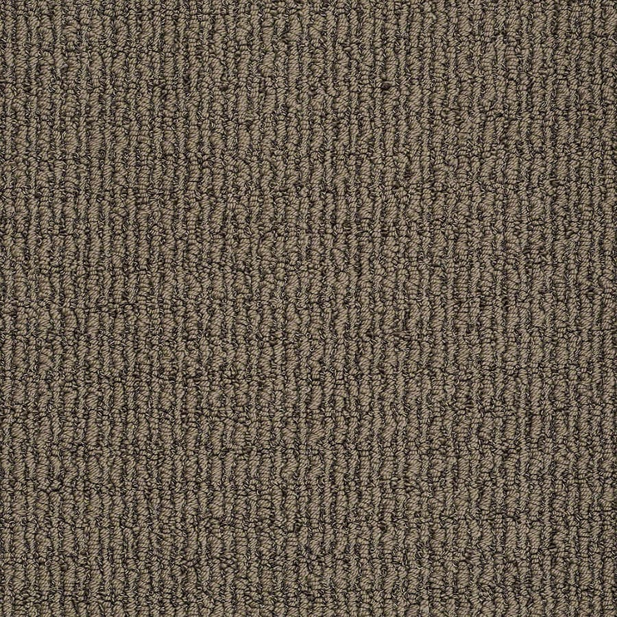 STAINMASTER TruSoft Uneqivocal Lasso Brown Berber/Loop Carpet Sample
