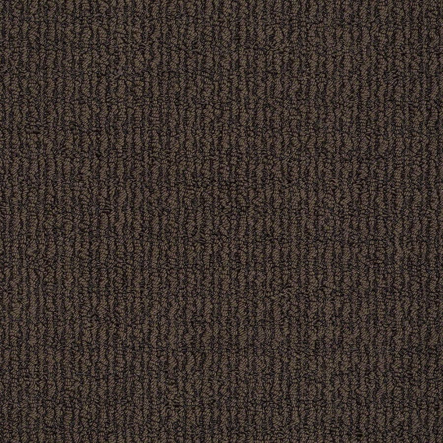 STAINMASTER Uneqivocal TruSoft Root Beer Berber Carpet Sample
