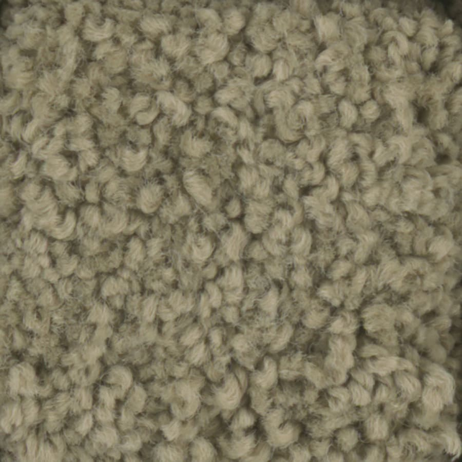 STAINMASTER TruSoft Subtle Beauty Celery Plush Carpet Sample