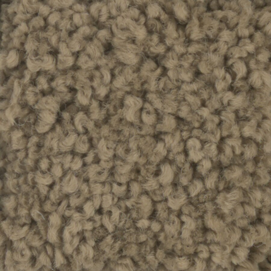 STAINMASTER Subtle Beauty TruSoft Dry Creek Plush Carpet Sample