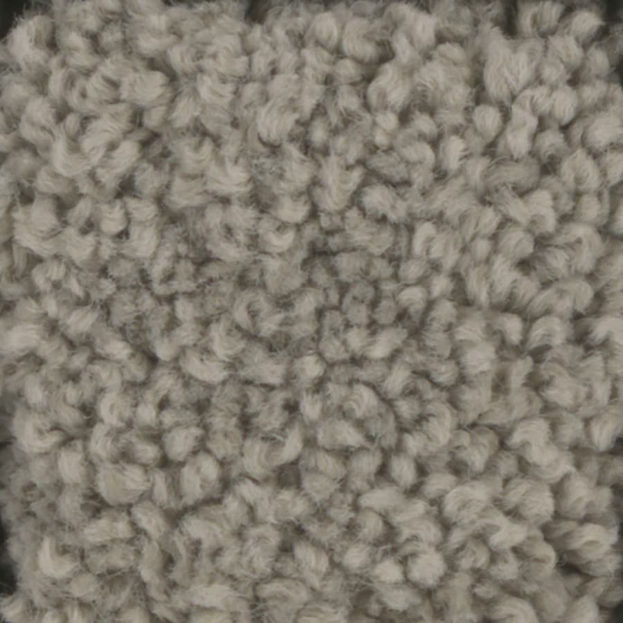 STAINMASTER Subtle Beauty TruSoft Wheat Toast Plush Carpet Sample