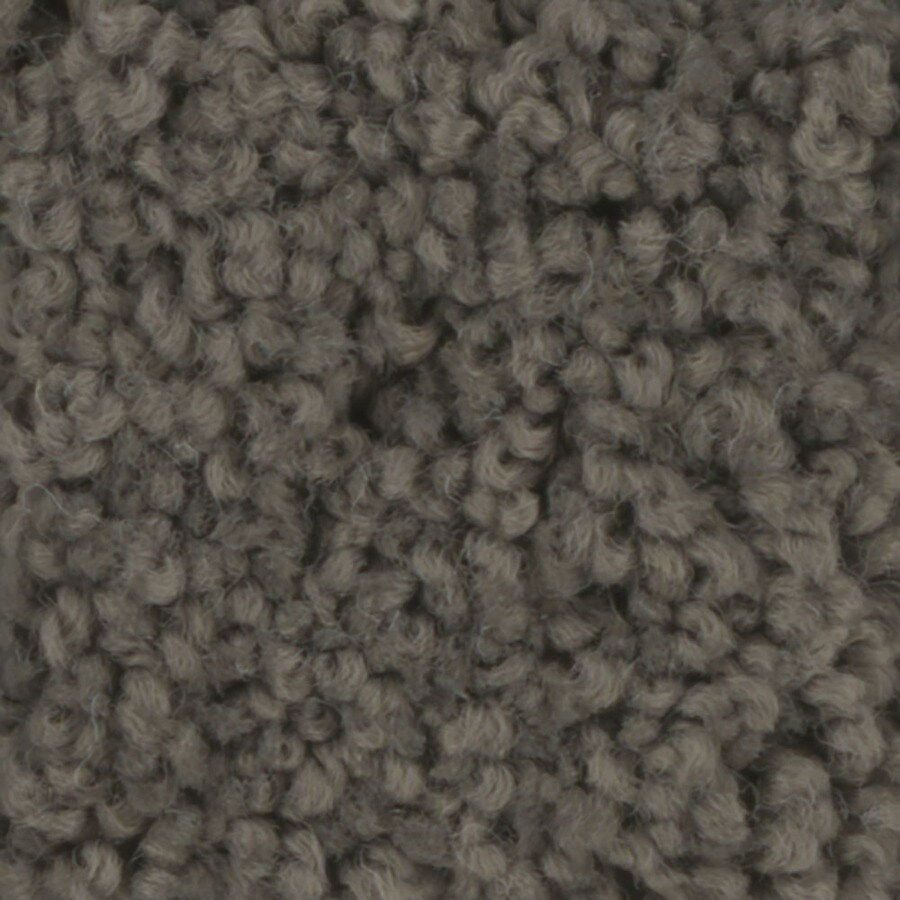 STAINMASTER TruSoft Subtle Beauty Riverbed Carpet Sample