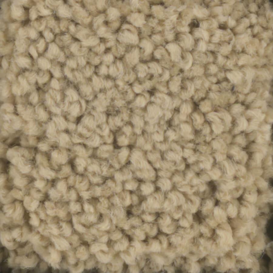 STAINMASTER TruSoft Subtle Beauty Caramel Carpet Sample