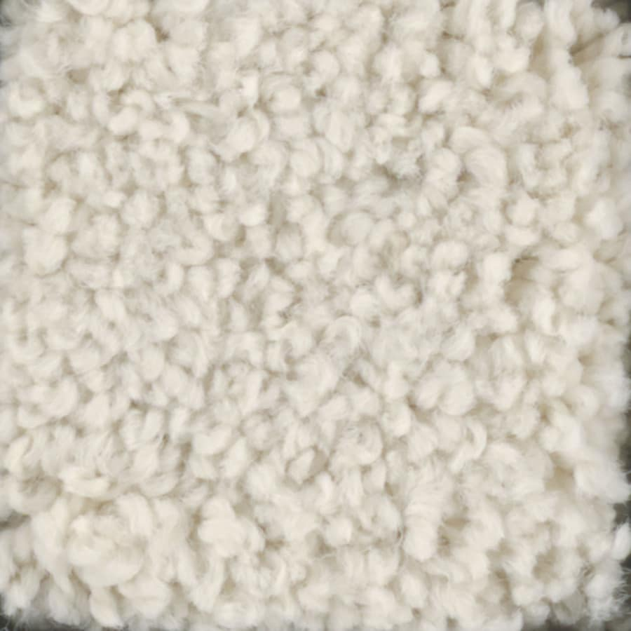 STAINMASTER TruSoft Subtle Beauty Divinity Carpet Sample