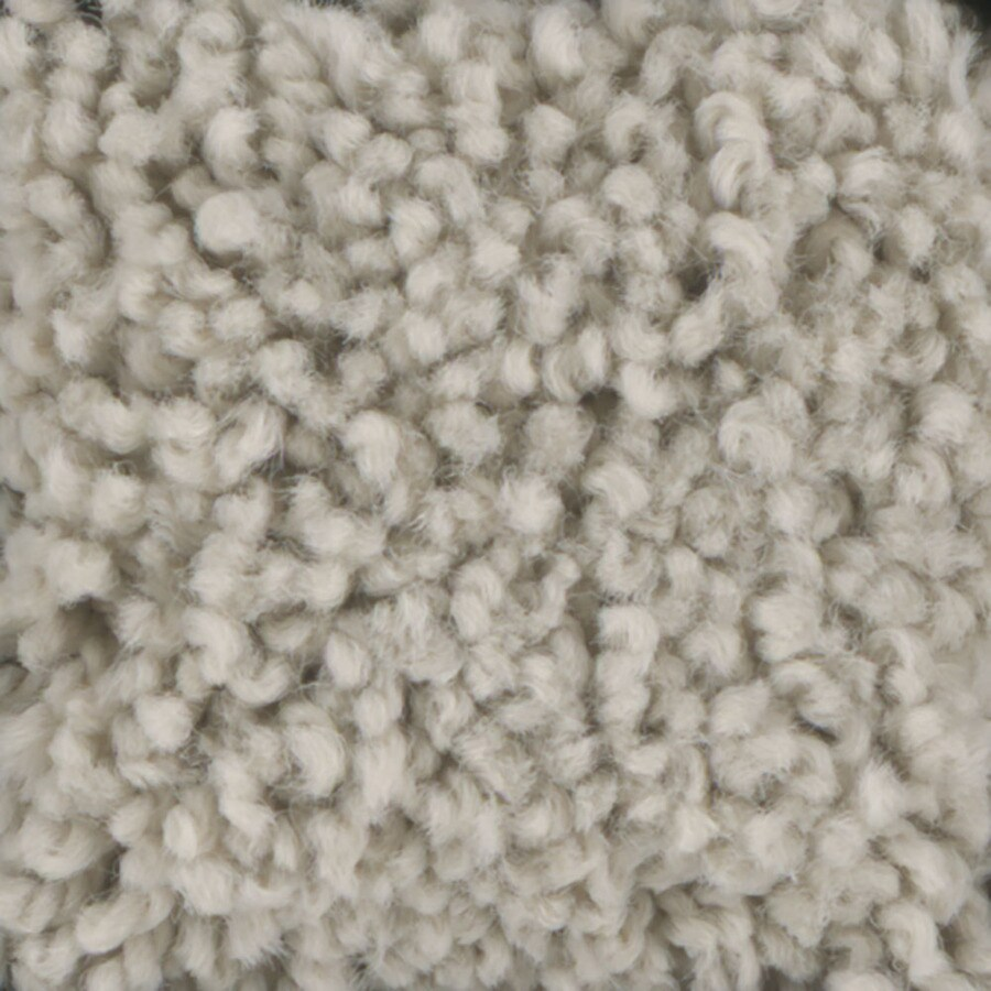 STAINMASTER TruSoft Subtle Beauty Glaze Carpet Sample