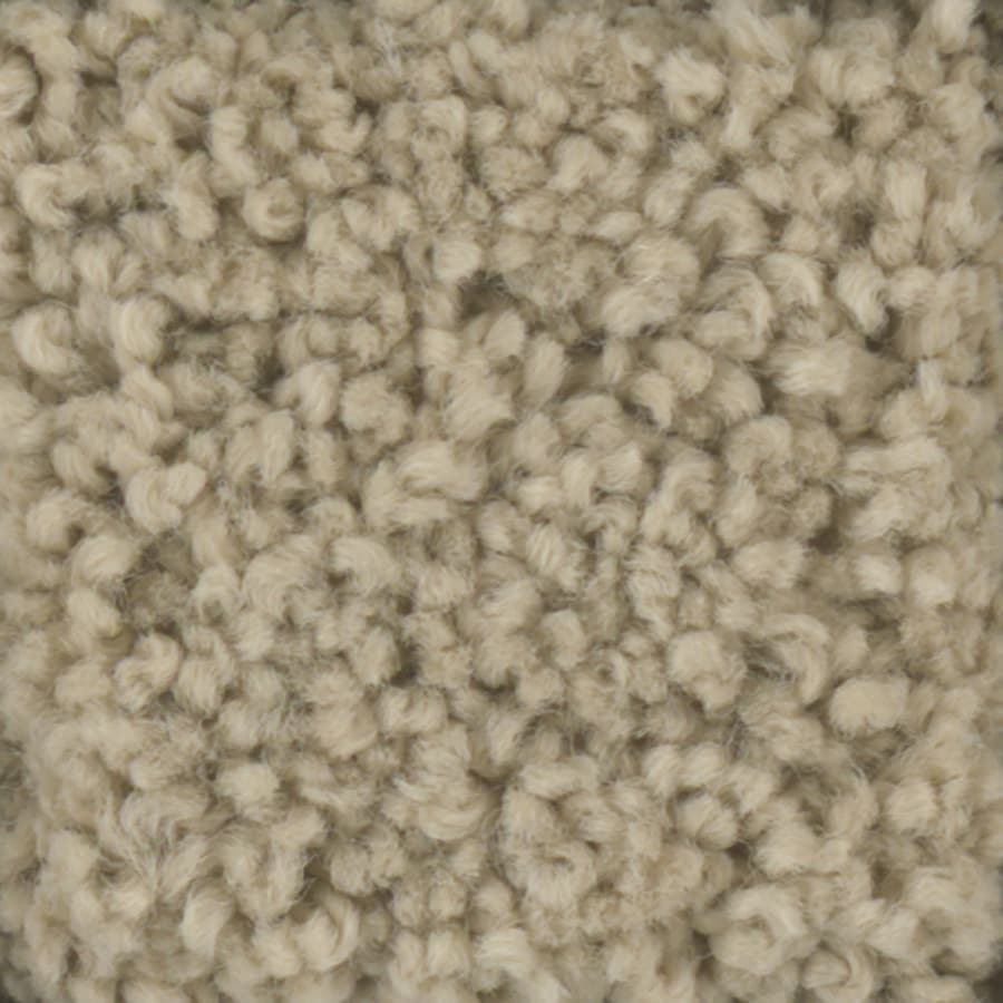 STAINMASTER Subtle Beauty Trusoft Sombrero Plus Carpet Sample