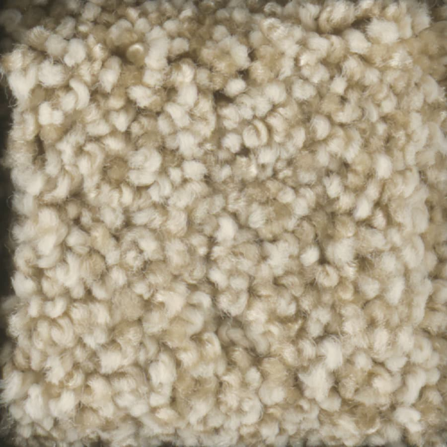 STAINMASTER TruSoft Dynamic Beauty 1 Sugar Cookie Carpet Sample