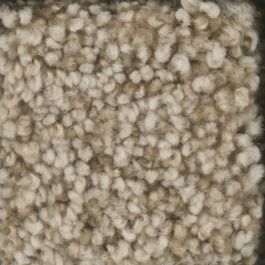 STAINMASTER TruSoft Dynamic Beauty 1 Masonry Carpet Sample